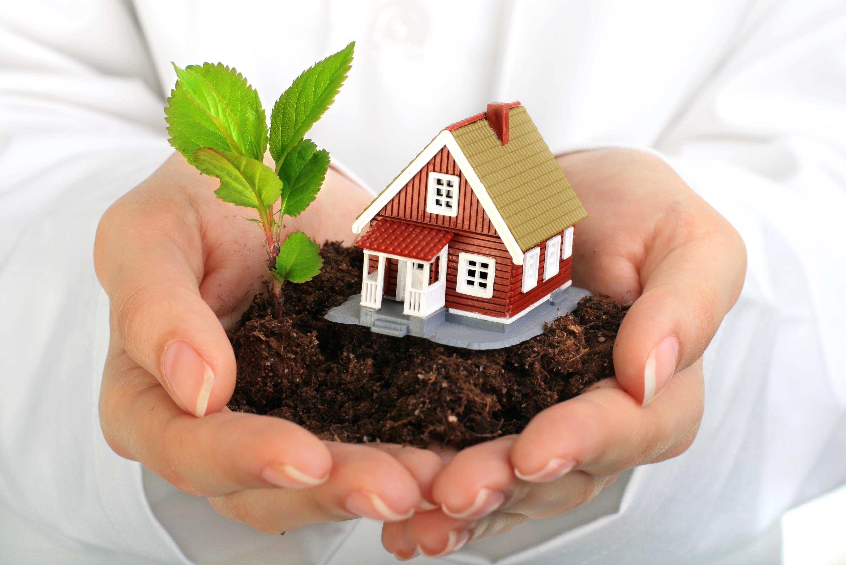 арендованный земельный участок в собственность
